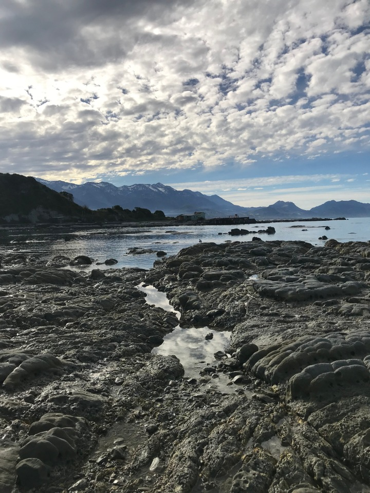 On Tour, Pt 4 – Seafood in Kaikoura and a Night at Mt Lyford Lodge