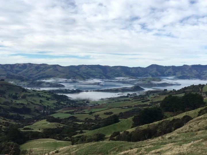 Easy Day Trips From Christchurch – A Scenic Drive toAkaroa